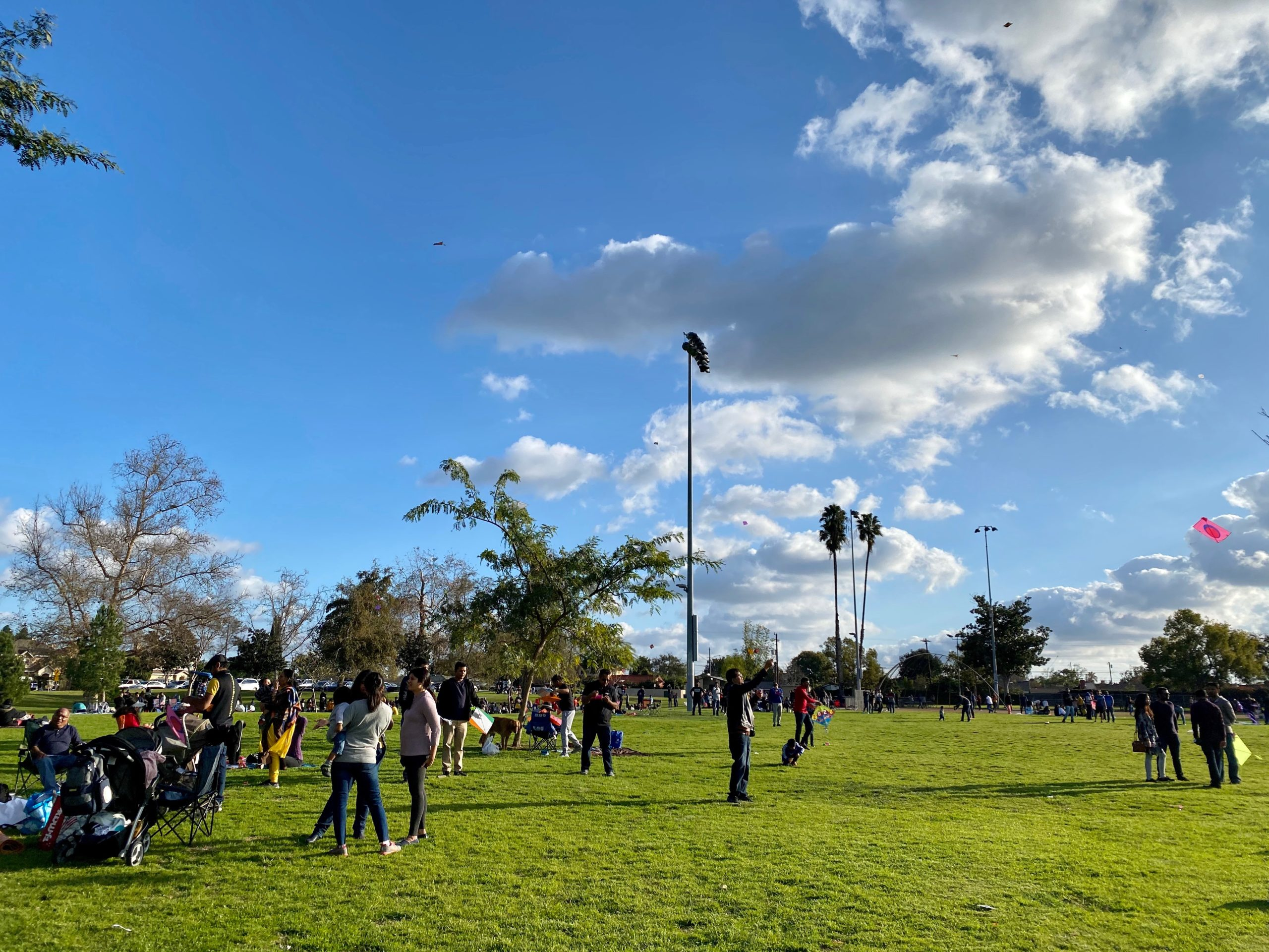 Uttarayan Kite Flying Festival in Los Angeles California